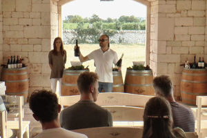 Wine Tour In valle d'Itria 01