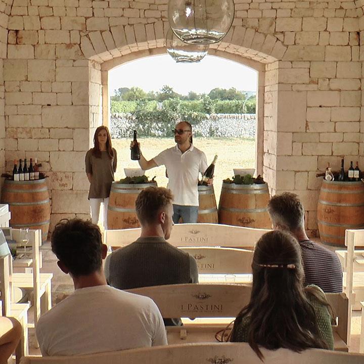 Wine Tour In valle d'Itria 01