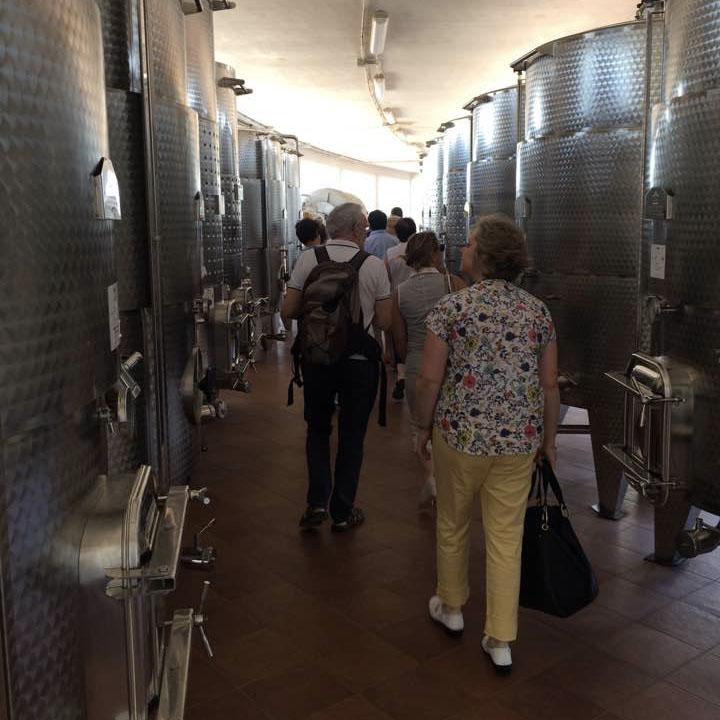 Wine Tour In valle d'Itria 04