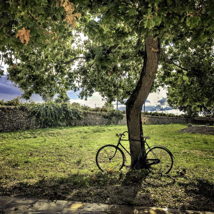 Wine Tour In valle d'Itria 05