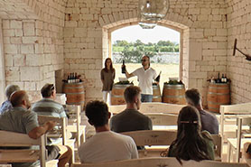 experience-enogastronomia-Wine-Tour-In-valle-d'Itria